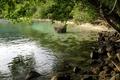 Картинка Вода, камни, дерево, листва, тень