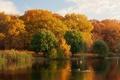 Картинка озеро, природа, фото, деревья, берег, осень
