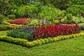 Картинка трава, природа, парк, фото, газон, США, кусты, Longwood, Kennett Square