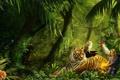 Картинка Джунгли, тигр, животные, рисунок, красота