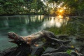 Картинка солнце, джунгли, свет, река, утро