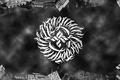 Картинка Undeground, Tankograd Underground, Грязный Свободный, Music, Арт, Black & White, Wallpaper, Логотип, ОУ74, Музыка, Art, ...