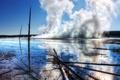 Картинка лес, пар, Yellowstone