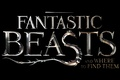 Картинка logo, film, Harry Potter, spin-off, Fantastic Beasts And Where To Find Them, HP, movie, cinema