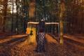 Картинка осень, смычок, скрипка, лес, скрипачка