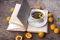 Картинка ромашки, абрикосы, чай, книга