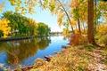 Картинка осень, деревья, природа, река, Riverside Walk