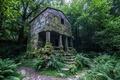 Картинка дом, ступени, колонна, небо, заросли, лес