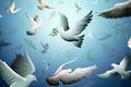 Картинка Голуби, птицы, ветки, рисунок, полет
