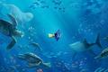 Картинка черепахи, акула, Дори, лучи света, рыбка, пузырьки, мультфильм, рыбы, море, Finding Dory, подводный мир, океан, ...
