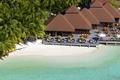 Картинка сейшелы, пальмы, остров, мальдивы, берег, пляж, песок