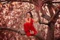 Картинка на дереве, девушка, красное платье