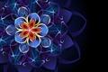 Картинка цветок, абстракция, узор, flower, pattern, abstraction