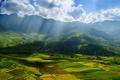 Картинка поля, китай, азия