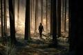 Картинка лес, природа, девушки, блондинки