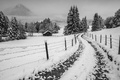 Картинка winter, misty, road, fog, foggy, village, farm, mountain, house, fence, cloudy, mist, countryside, freeze, snow, ...